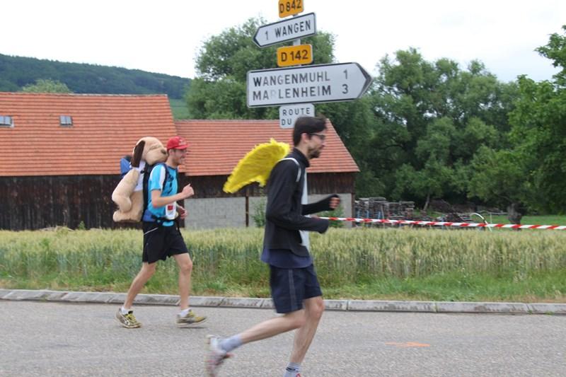 11 ème édition du Marathon du Vignoble d'Alsace et son passage à Wangen le 21 juin 2015 Img_8435
