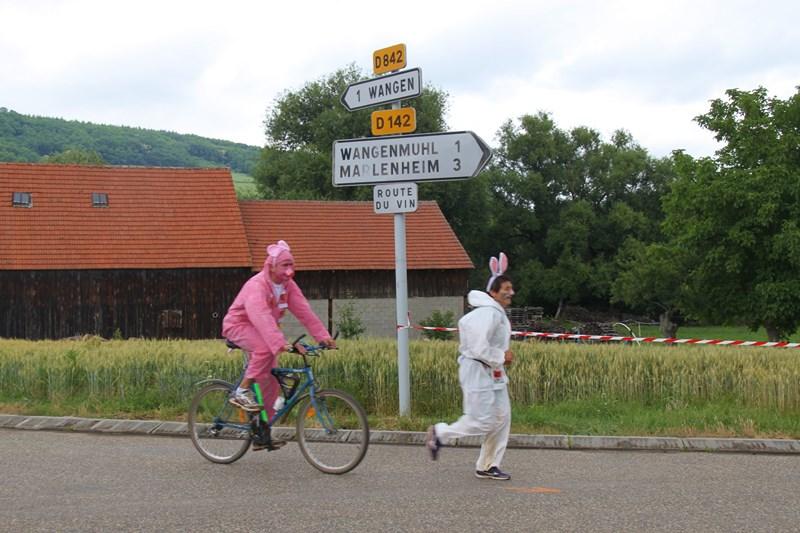 11 ème édition du Marathon du Vignoble d'Alsace et son passage à Wangen le 21 juin 2015 Img_8510