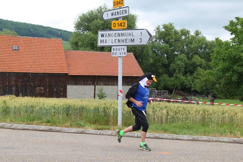 11 ème édition du Marathon du Vignoble d'Alsace et son passage à Wangen le 21 juin 2015 Img_8525