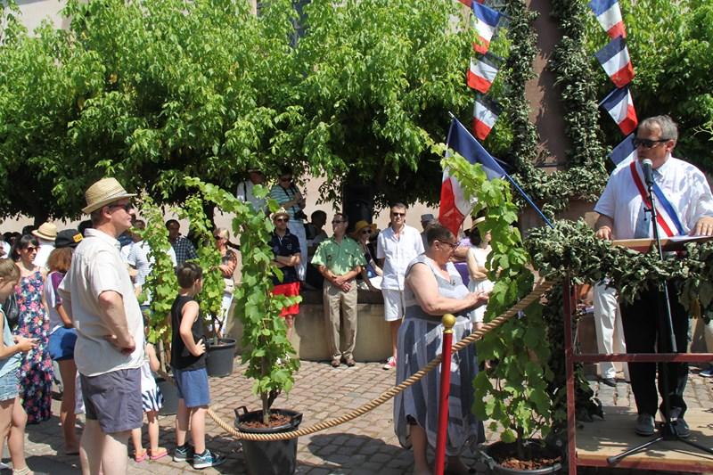 188 ème édition de la Fête de la Fontaine de Wangen, 5-6 juillet 2015 Img_9050