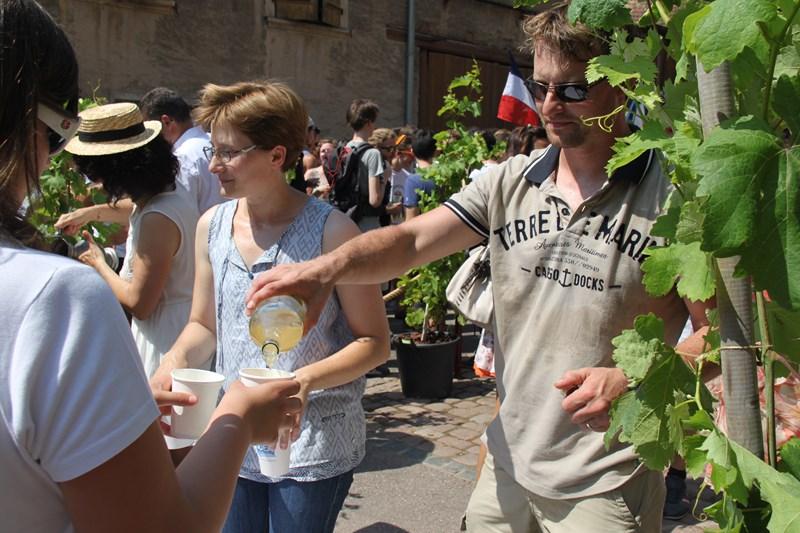 188 ème édition de la Fête de la Fontaine de Wangen, 5-6 juillet 2015 Img_9139
