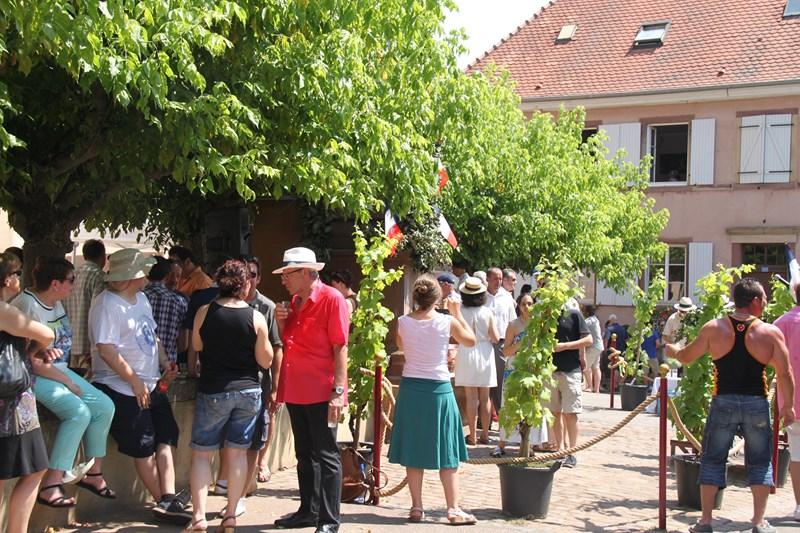 188 ème édition de la Fête de la Fontaine de Wangen, 5-6 juillet 2015 Img_9252