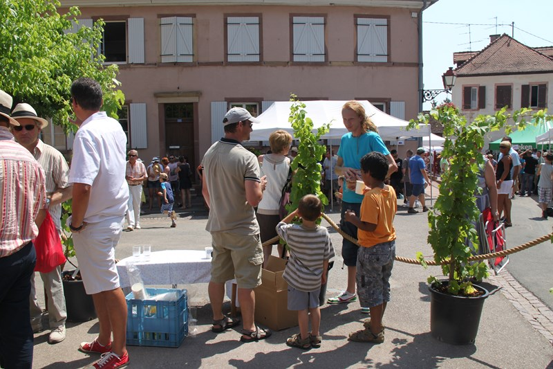 188 ème édition de la Fête de la Fontaine de Wangen, 5-6 juillet 2015 Img_9256