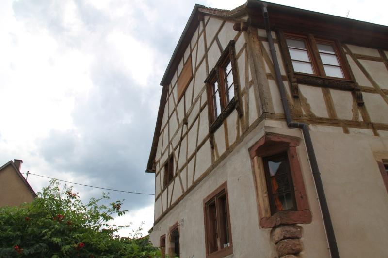 Visites commentées de Wangen- Eté 2015- Img_9913