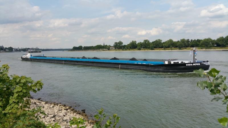 Der Rhein bei Mondorf am 22.07.2015 20150710