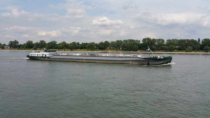 Der Rhein bei Mondorf am 22.07.2015 20150711