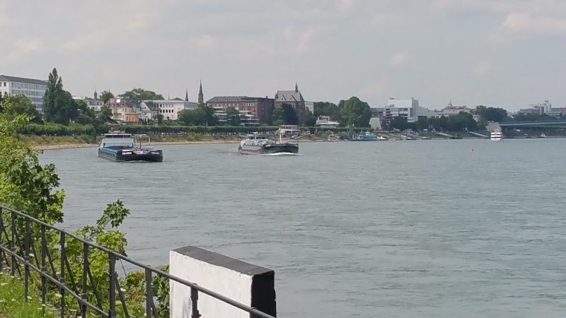 Der Rhein bei Mondorf am 22.07.2015 20150712