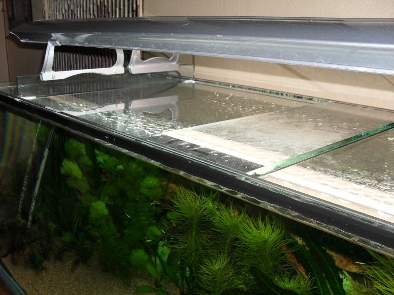 aquarium sans galerie ou avec Sam_1511