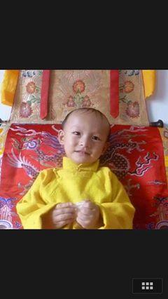 Départ de Kyabjé Trulshik Rinpoché - Page 2 Trulsh10