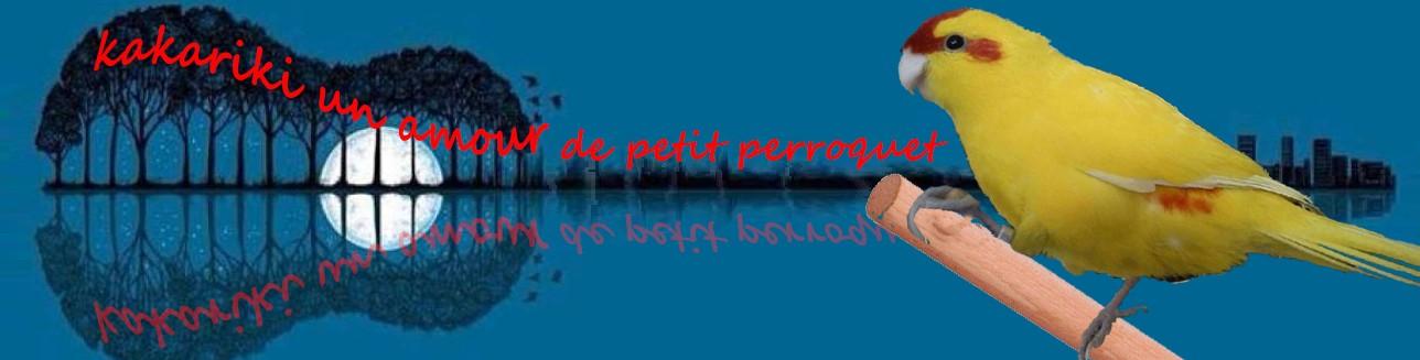 Le Forum International des Amoureux Passionnés du Kakariki