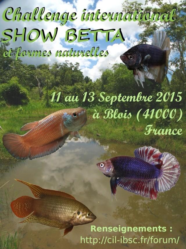 Blois, Challenge International 2015, 11/13 septembre. Affich10