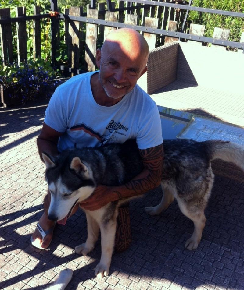 Echo, 6 ans, Husky ( f )- Pour maître sportif REFU78   00410
