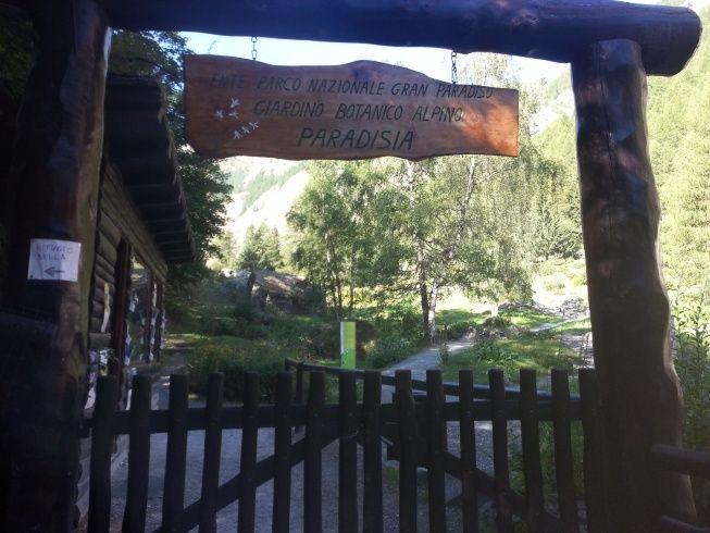 Jardin botanique alpin Paradisia, Cogne, Vallée d'Aoste (IT) 20150816
