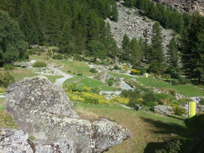 Jardin botanique alpin Paradisia, Cogne, Vallée d'Aoste (IT) 20150817