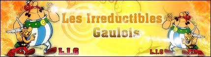 Les Irréductibles-Gaulois {IG}