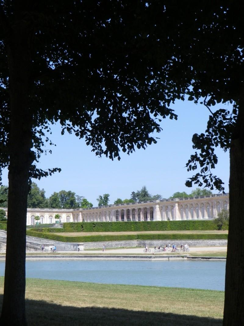 Versailles, le Grand Canal Pique-26
