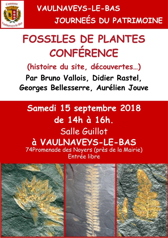 Flore Carbonifère des Alpes Françaises part 2 - Page 3 Affich10