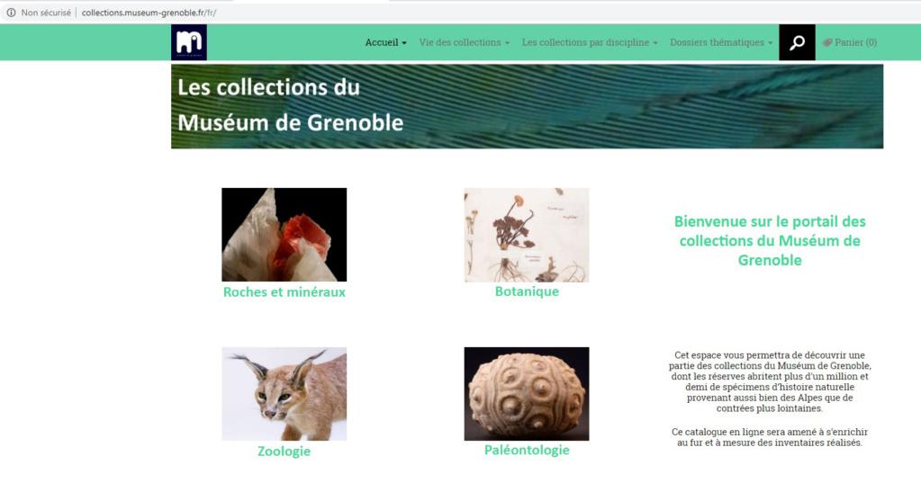 Bibliographie et sites web sur la  paléobotanique - Page 2 Sans_t10