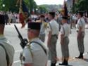 (N°59)Photos du défilé militaire du 14 juillet 2015 à BELFORT .(Photos de Raphaël ALVAREZ) Photos33
