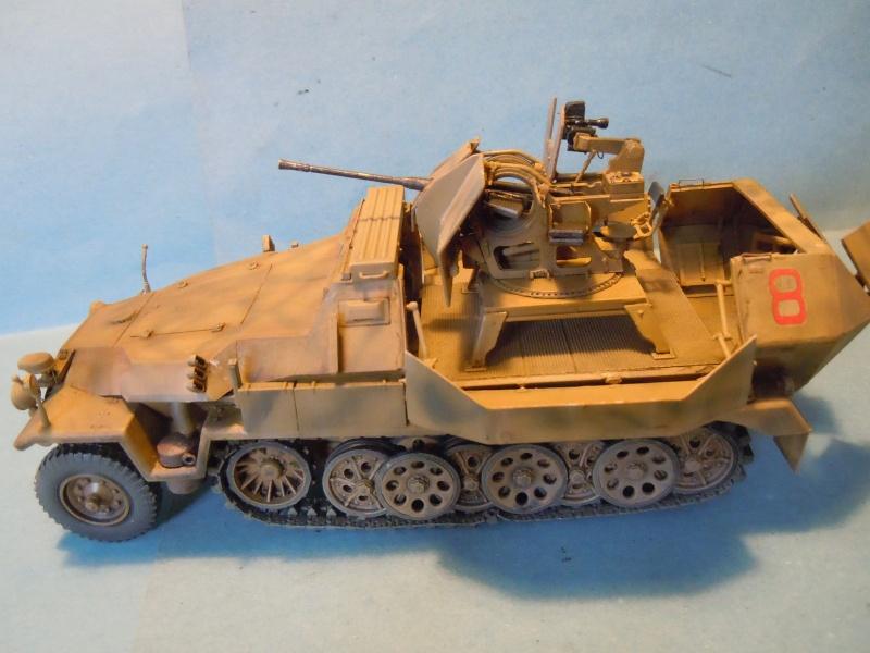 SDKFZ 251/17 Flack 38 -20mm- Luftwaffe - Panzer division Hermann Goering Dscn6110