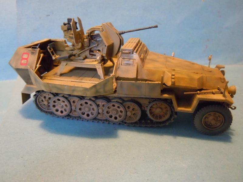 SDKFZ 251/17 Flack 38 -20mm- Luftwaffe - Panzer division Hermann Goering Dscn6112