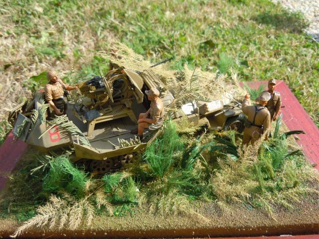 SDKFZ 251/17 Flack 38 -20mm- Luftwaffe - Panzer division Hermann Goering Dscn6316