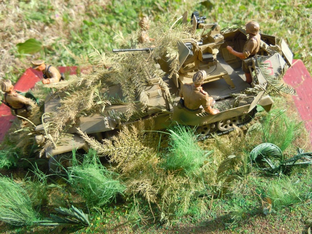 SDKFZ 251/17 Flack 38 -20mm- Luftwaffe - Panzer division Hermann Goering Dscn6318