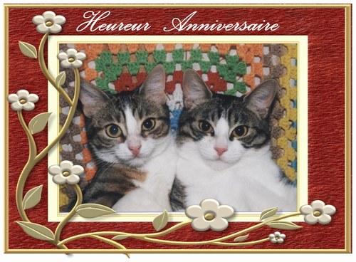 Joyeux anniversaire Jennifer 47206010