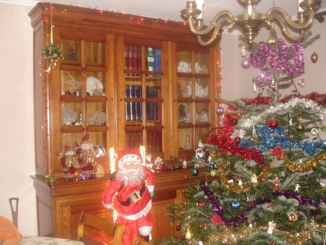 Votre décoration de Noel - Page 2 Dsc01012
