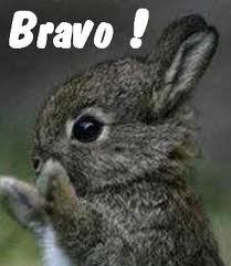 NOURS le Griffon (ex Fripon ex Nippon) Bravo_10