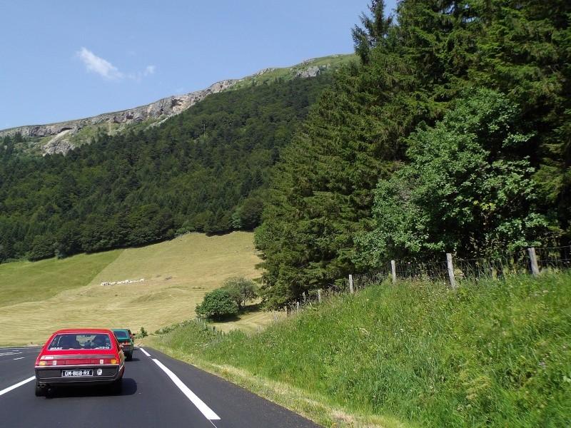 Estivale 2015 en Auvergne - Page 9 Imgp3632