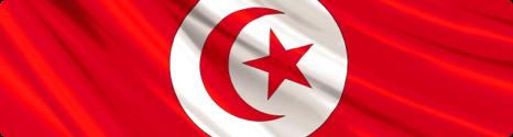 Les tarifs des appels vers la Tunisie augmentent également chez Bouygues Telecom 14340310