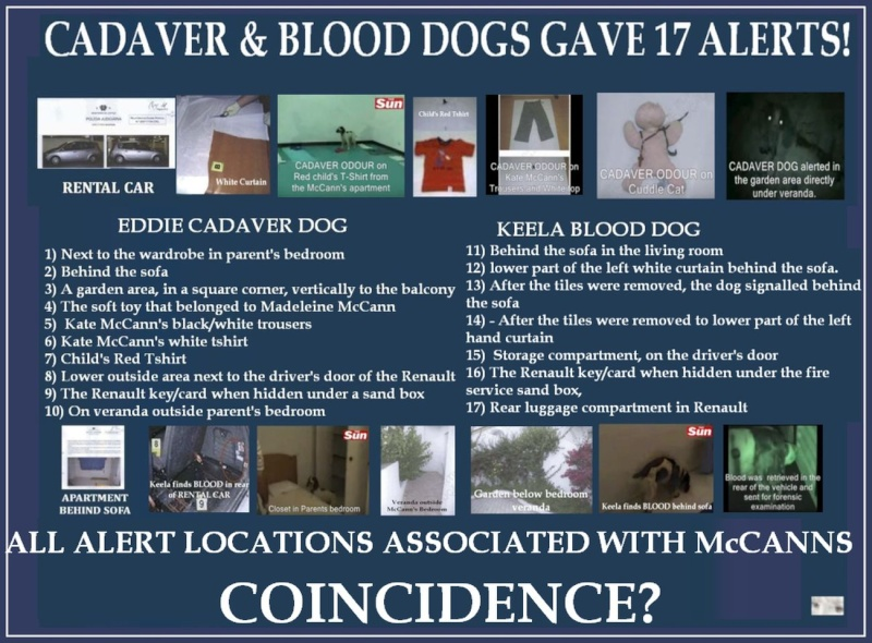 17 alerts by CADAVER & BLOOD dogs and 17 Questions that demand answers! 17_ale11
