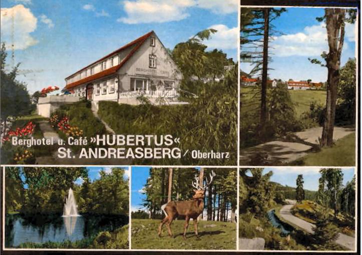 """Das Gelände des ehemaligen Hotels """"Hubertus"""" Hotel_12"""