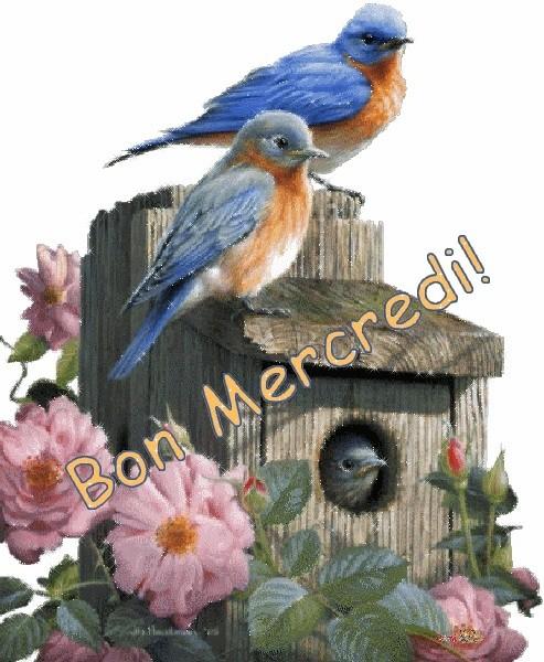 Bonjour du jour et bonsoir du soir Mercre13