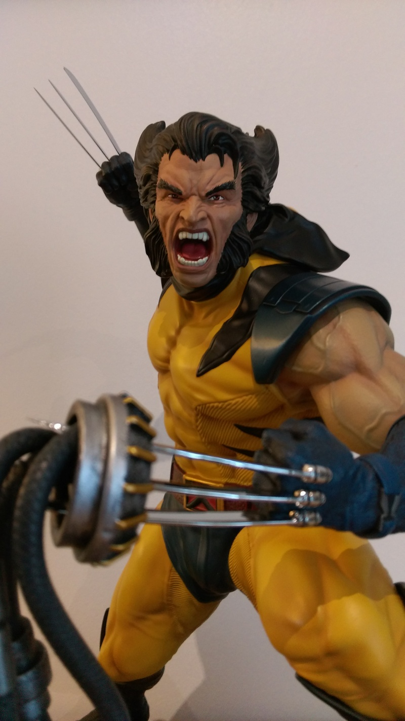 Premium Collectibles : Wolverine - Comics Version - Page 11 Imag0515
