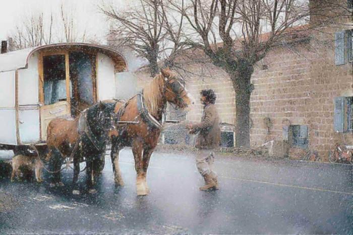 les chevaux  - Page 3 Manouc10