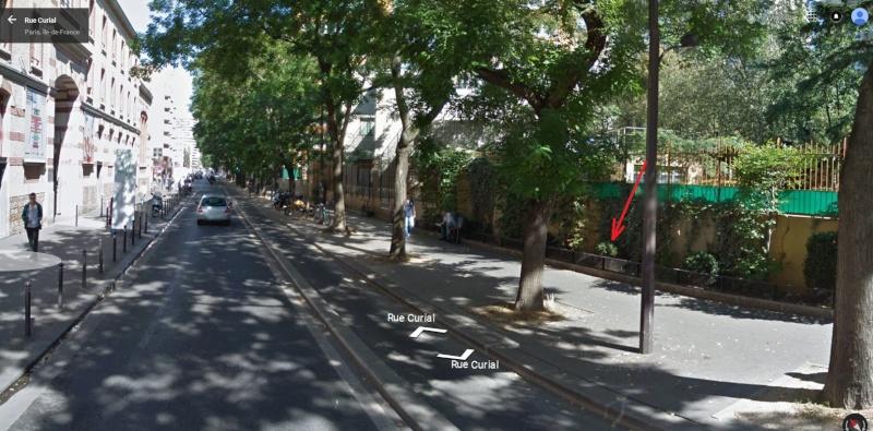 Récupérer un rat dans la rue ? Help - 75019 Paris Rat_ab10