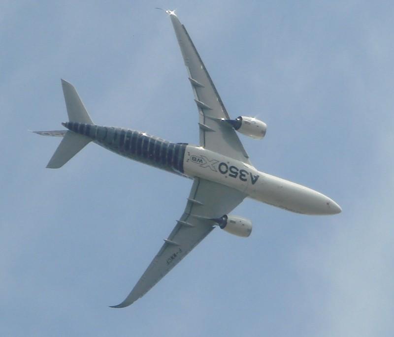 Ca y est il a commencé le salon A35010