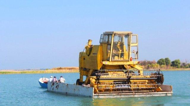 Biçerdöverler Sal Üzerinde Gölden Adaya Taşınıyor Bicerd10