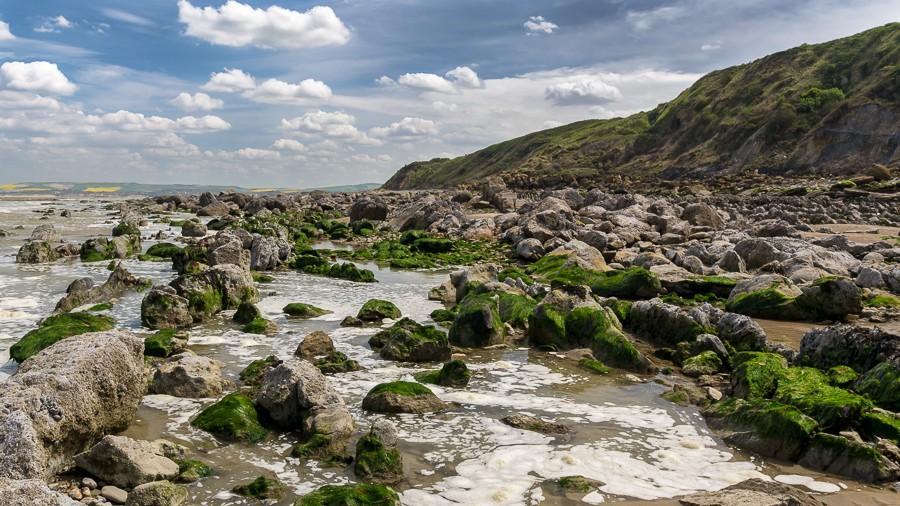 A la côte d'Opale... 308_pl10