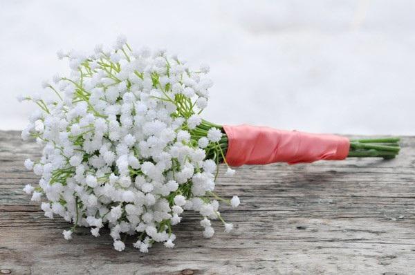Loài hoa đem lại may mắn cho 12 cung Hoàng đạo Baby-c10
