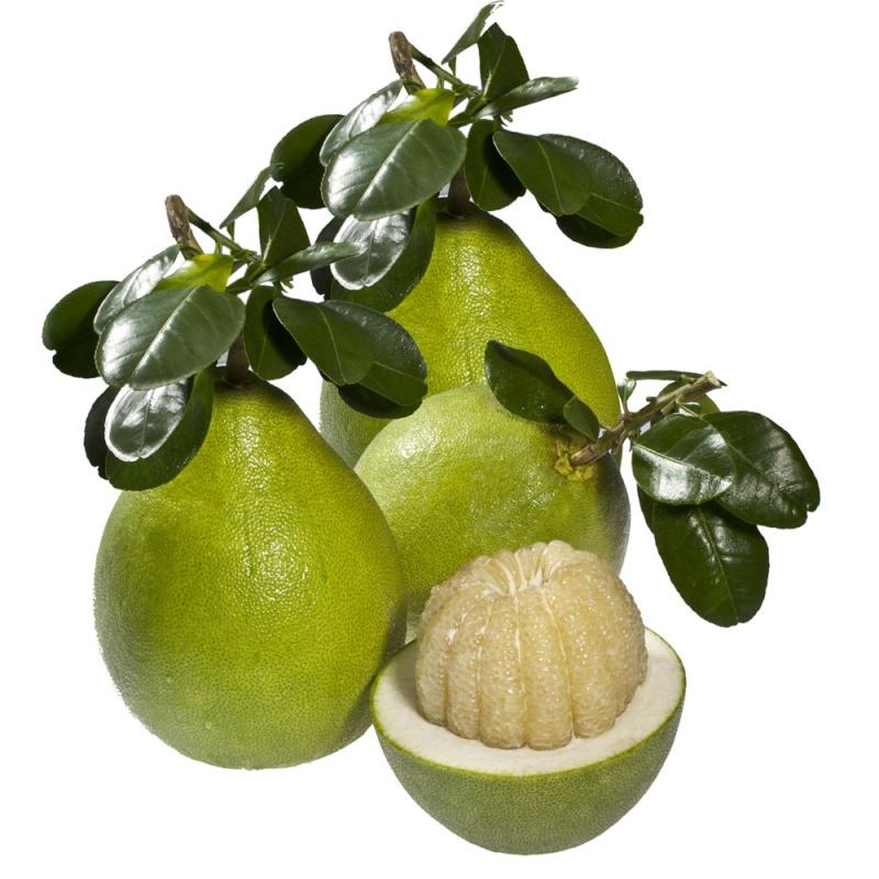 Loại trái cây mang tới may mắn cho 12 con giáp Bi-quy11