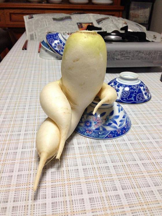 Những hình ảnh hài hước về rau củ Fruits15