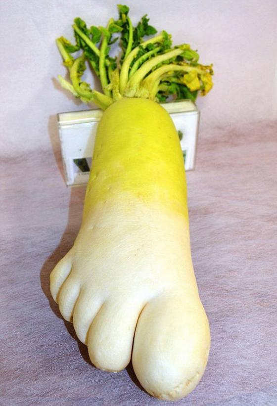 Những hình ảnh hài hước về rau củ Fruits17