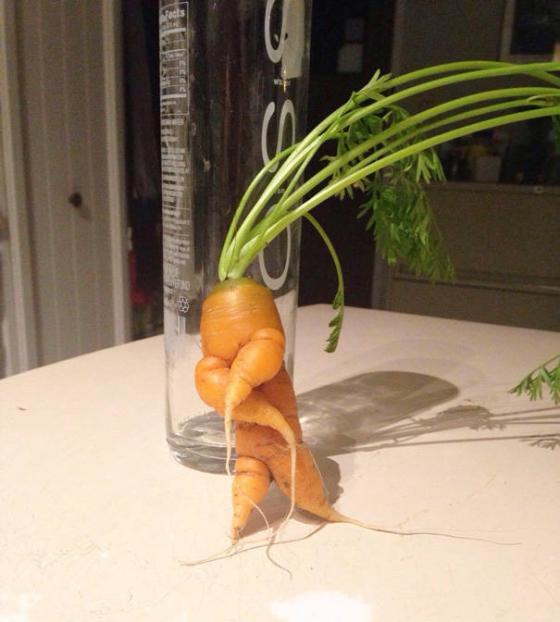 Những hình ảnh hài hước về rau củ Fruits19