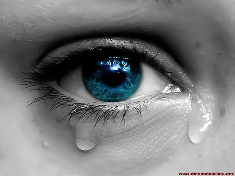 Tình yêu buồn Hinh-a98
