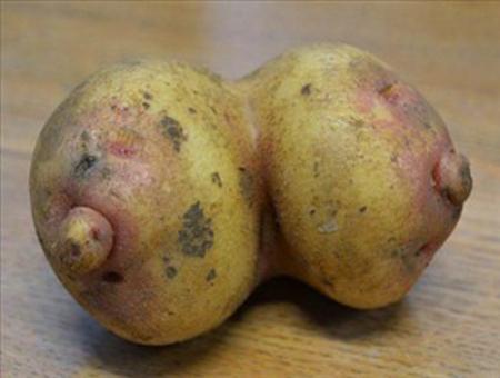 Những hình ảnh hài hước về rau củ Om-bun10