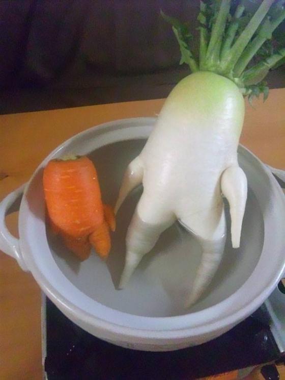 Những hình ảnh hài hước về rau củ Om-bun11