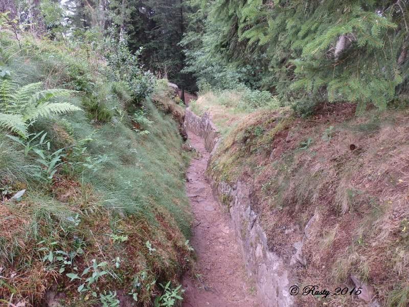 Marcher dans leurs traces pour ne pas les oublier - Le Linge 1915 P8042415